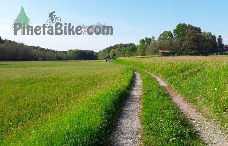 Sentiero-Parco-Pineta-Pineta-Bike-small