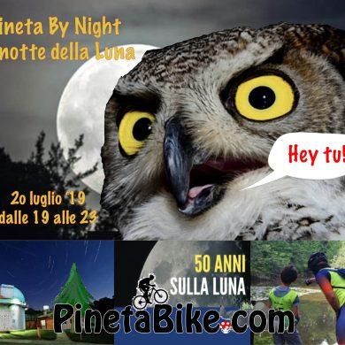 Parco Pineta by Night 50 Luna