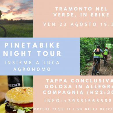 Tour PinetaBy Night nel Parco Pineta